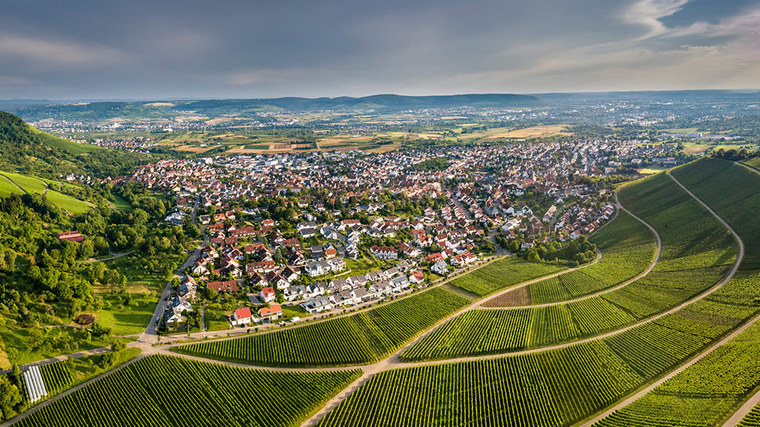 Settlement in a wine-growing region (refer to: Spatial development)